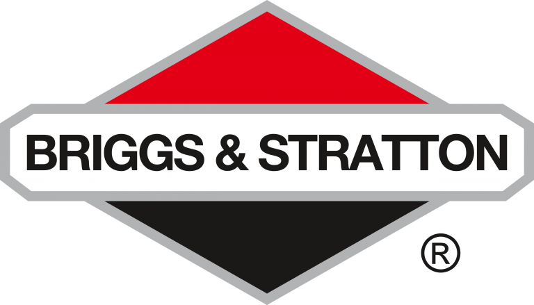 Briggs & Stratton Engine Parts for sale Wisconsin Rapids